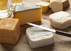 ol-och-ostprovning