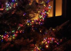 färgad julgransbelysning